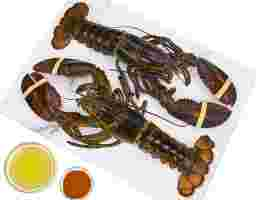 North American Live Cold Water Lobster